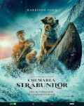 The Call of the Wild / Chemarea străbunilor
