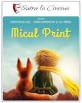 Micul Prinț - Teatru la Cinema Online