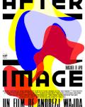 Afterimage / Imaginea de apoi ARTA-Acasă