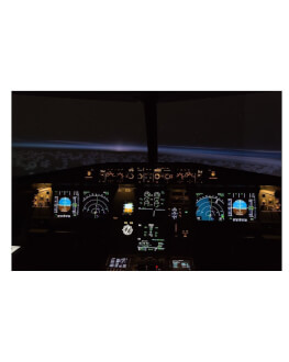 Bucura-te de o experienta de zbor la mansa unui simulator Airbus A320