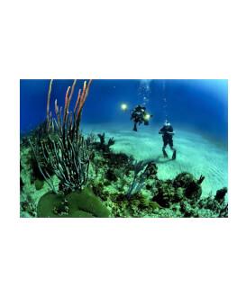 Experienta de scuba diving pentru 2 si cazare cu MD