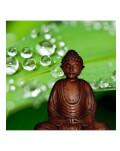 Yoga in 2 si masajul Yumeiho de cuplu – o experienta a relaxarii