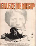 FALEZE DE NISIP / SAND CLIFFS Cinemateca Online