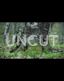 Concert live trupa UNCUT TIFF.19