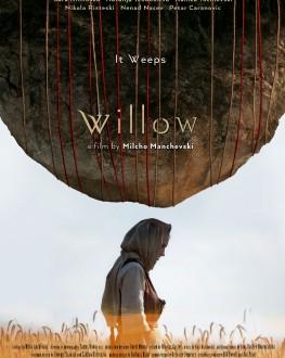 Willow TIFF.19