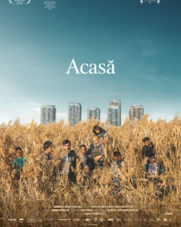 Acasă, My Home Astra Film Festival 2020