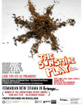 The Sunshine Play Bucharest Fringe 10