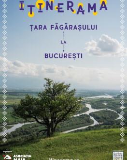 Cină: Din apele Țării Făgărașului – pește, pui de baltă, crustacee ITINERAMA – Țara Făgărașului la București