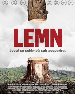 Lemn / Wood Noaptea Alba a Filmului Romanesc 2020 - IN EXTERIOR