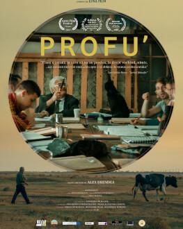 Profu / Teach Noaptea Alba a Filmului Romanesc 2020 - IN EXTERIOR