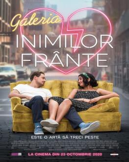 Galeria inimilor frânte / The Broken Hearts Gallery