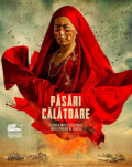 Păsări călătoare / Birds of Passage smART HOUSE films from Bad Unicorn