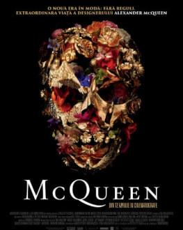 McQueen ARTA-Acasă: Art in Cinema