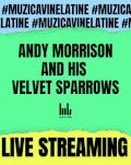 Andy Morrison and His Velvet Sparrows vin la tine. În boxe, căști și pe ecran.