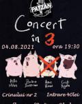 Concert Ada Milea in 3