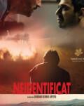 Neidentificat / Unidentified