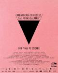 Babardeală cu bucluc sau porno balamuc (2021) SERILE FILMULUI ROMÂNESC (SFR), ediția a 12-a