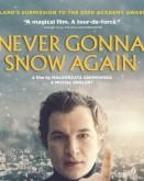 Never Gonna Snow Again TIFF.20
