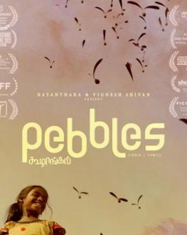Pebbles TIFF.20