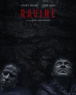 Ravine TIFF.20