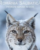 Wild Romania TIFF.20