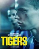 Tigers TIFF.20
