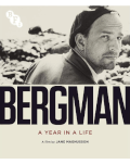 Film screening - Bergman: A Year in a Life The Opening of Bucharest Photofest.2021