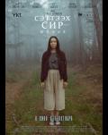 Cursed Land. Fate Dracula Film Festival