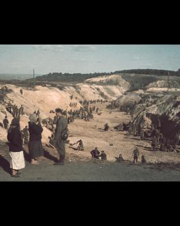 BABI YAR. CONTEXT LES FILMS DE CANNES À BUCAREST 12