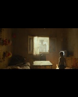 FEATHERS LES FILMS DE CANNES À BUCAREST 12