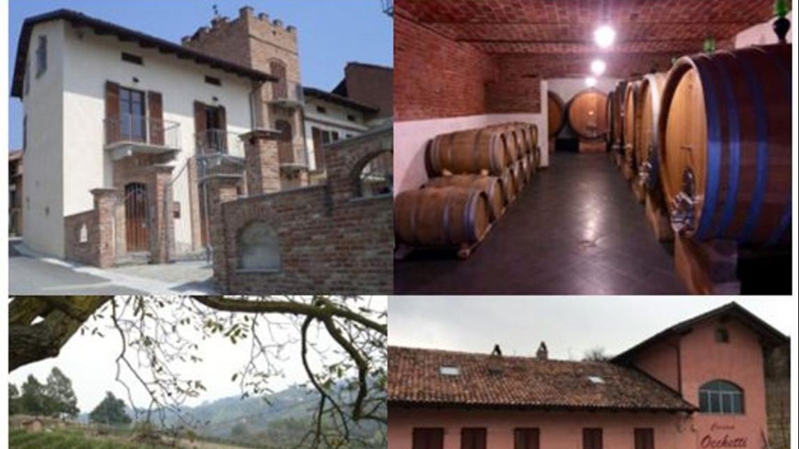 PODERI MORETTI cantina aperta per visita guidata e degustazione dei migliori vini di Alba Langhe e Roero luglio e agosto 2020