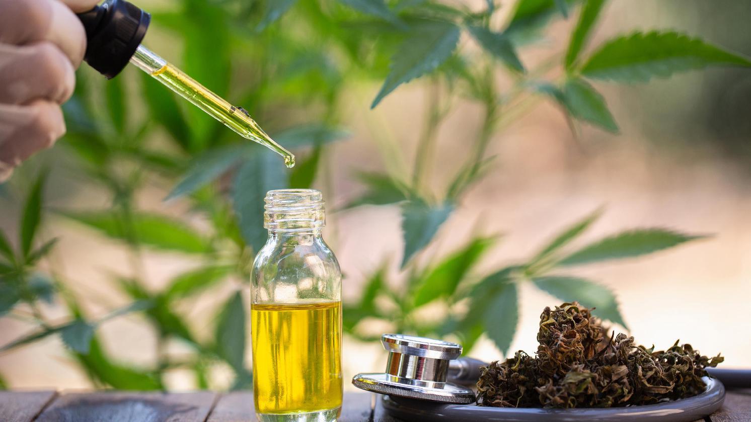 Cannablue CBD Oil| Does Cannablue CBD Oil Worth it?