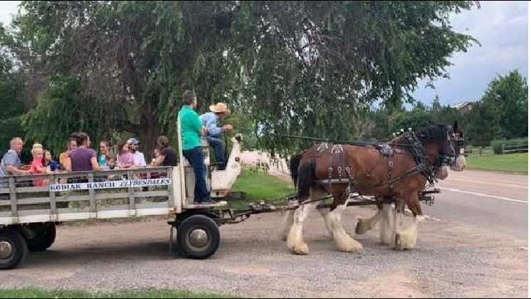 Clydesdales Hay Ride, BBQ & S'mores Party!