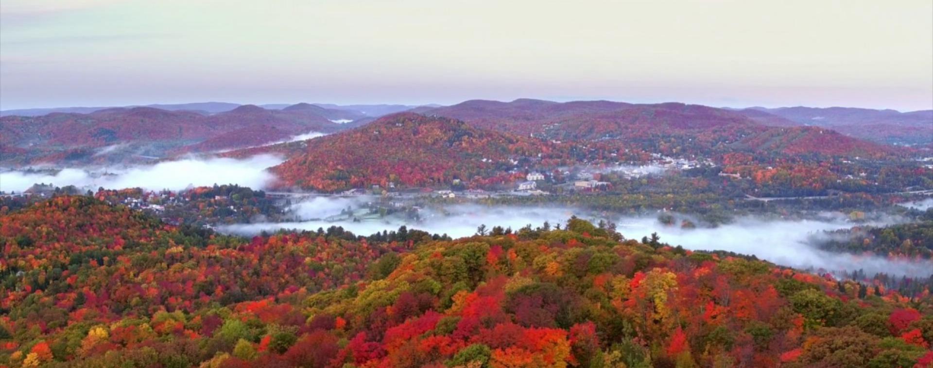 L'automne dans les Laurentides: un décor de rêve pour votre future maison