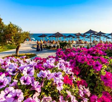 Снимка 4 на Elani Bay Resort, Гърция