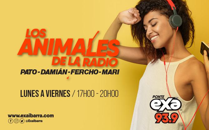Los Animales De La Radio