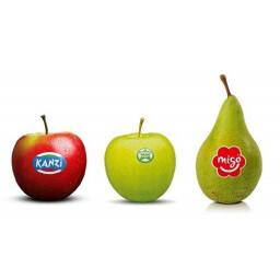 European Fruit Cooperation (EFC)