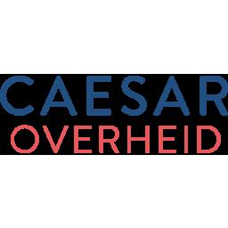 Java Developer bij Caesar Overheid