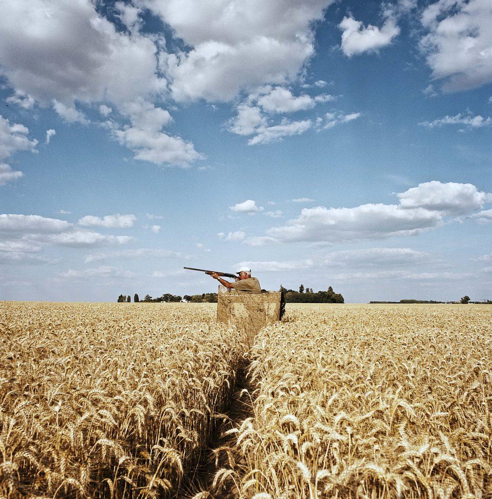Un chasseur sur le plateau de Saclay en Essonne /  © Valerio Vincenzo