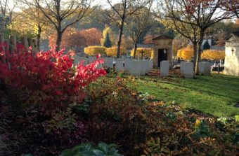 Le cimetière de Versailles : plus écolo, tu meurs