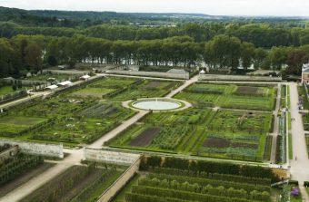 Versailles cultive son jardin