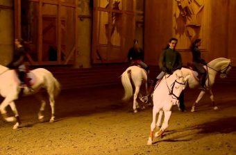 Le week-end en banlieue : on prend l'apéro au cirque et on danse avec les chevaux