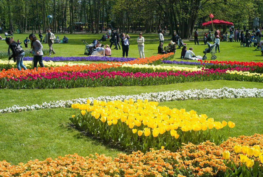 Fête des tulipes à Saint-Denis / DR