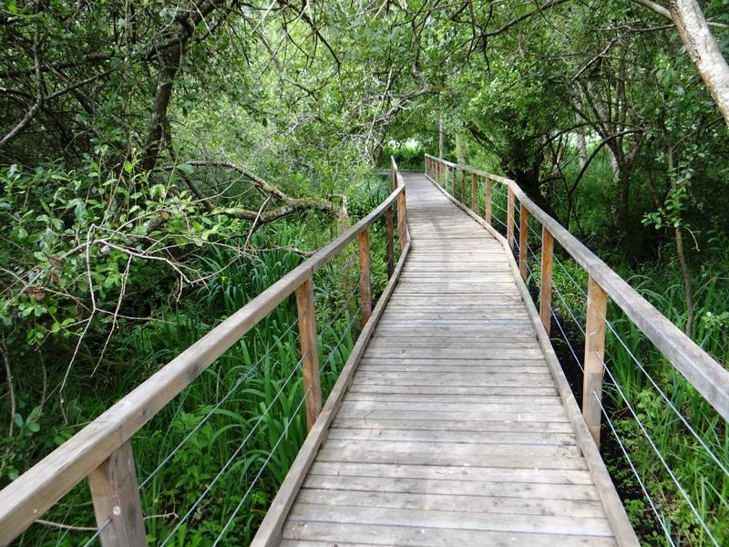 Sentier de découverte de Maincourt à Dampierre / © Office de tourisme des Yvelines