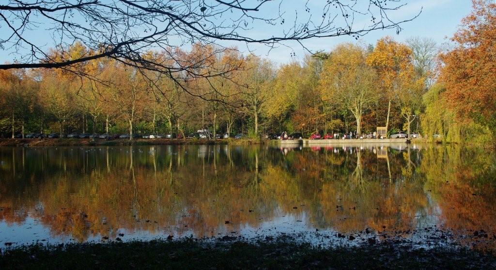 Les étangs de Meudon / DR