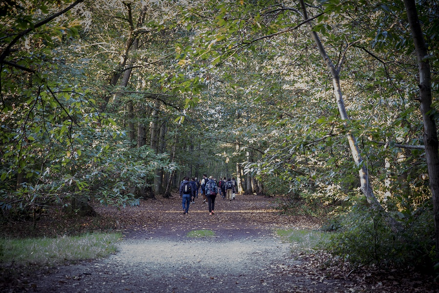 Bois de Clamart (92) / © Marie Genel