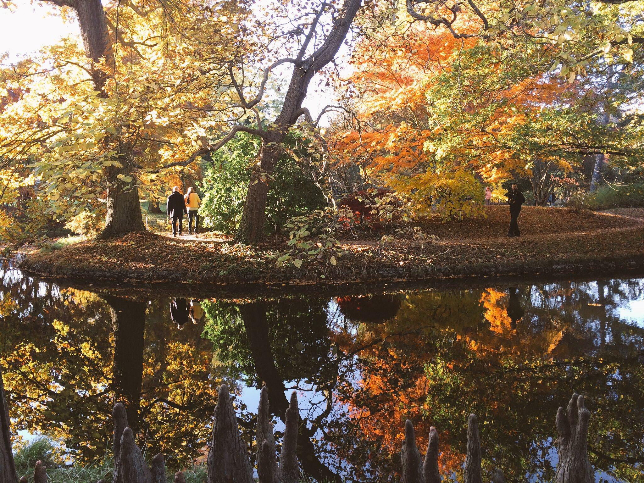 Arboretum de Châtenay-Malabry / © Camille Vielhescaze