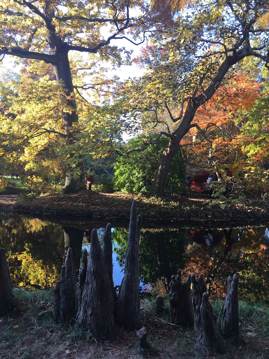 Arboretum de Châtenay-Malabry / © Twitto @mlacolombe