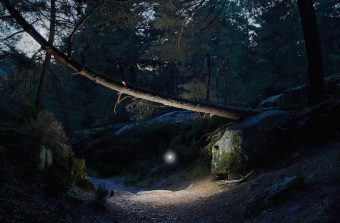 Il photographie les elfes de la forêt de Fontainebleau