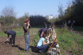 48 heures pour devenir Super Jardinier urbain